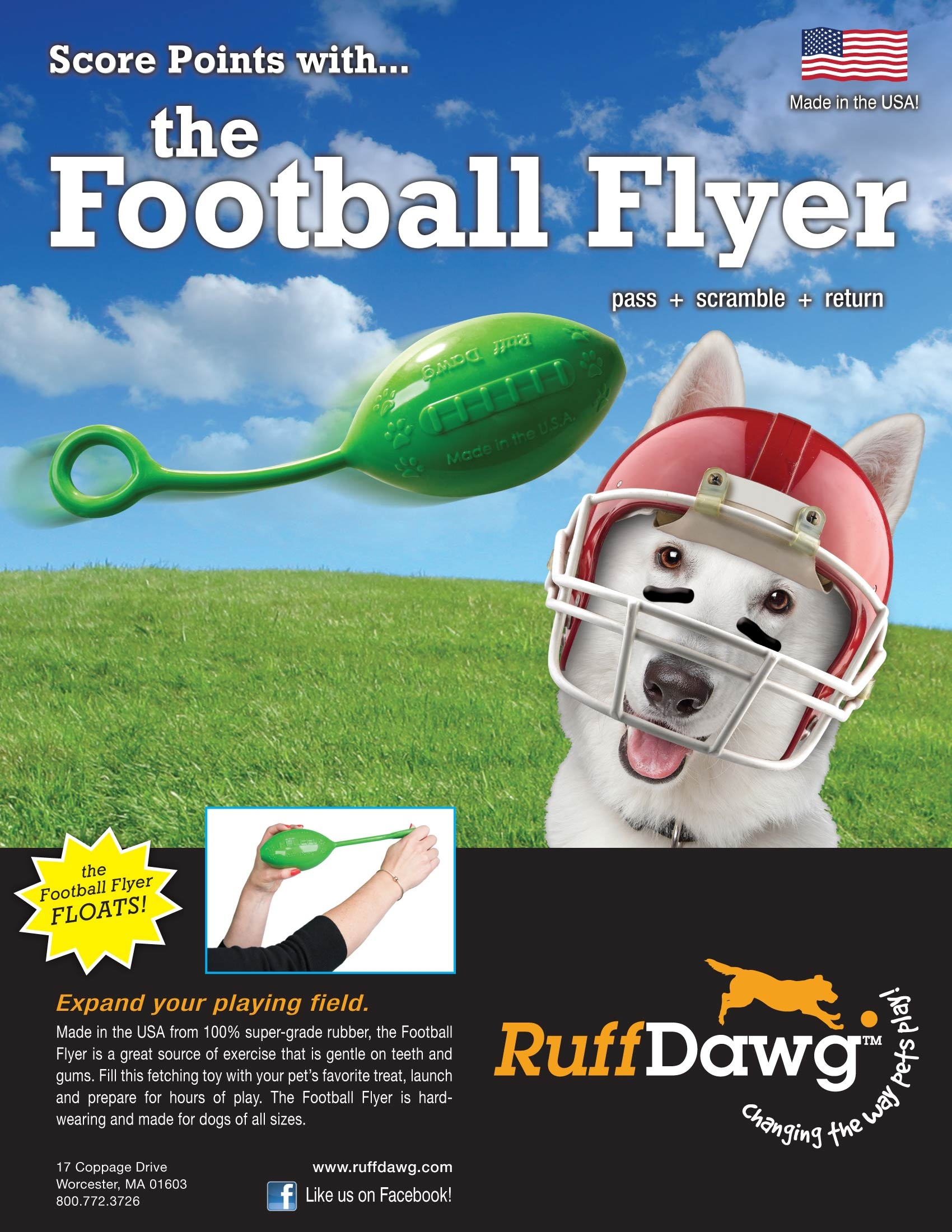 Football Flyer Sell Sheet